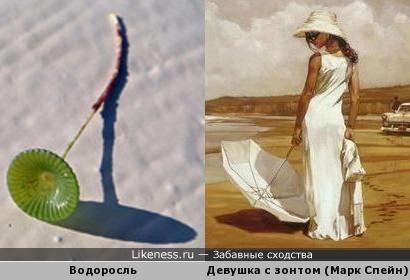 Ах, эти зонтики!
