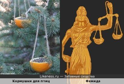 Ёлка правосудия