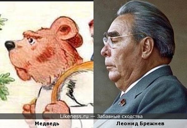 Медведь похож на Леонида Ильича Брежнева