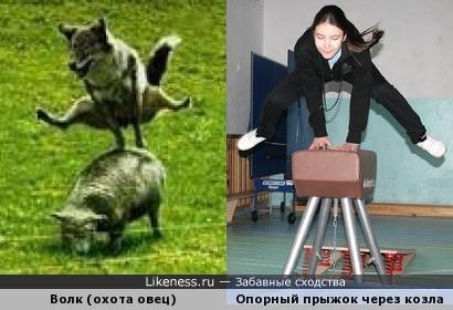 Прыжки через козла