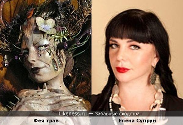 Фея трав и Елена Супрун