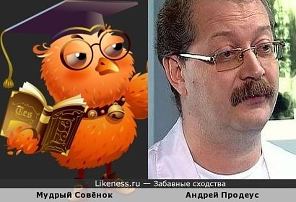 Мудрый Совёнок напомнил Андрея Продеуса