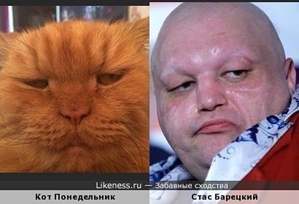 Стас Барецкий и кот Понедельник