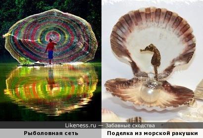 Морские гребешки