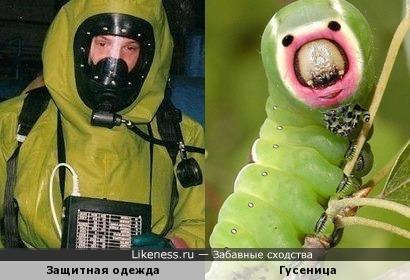 Защитная одежда и гусеница