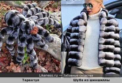 Шубка из пауков