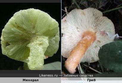 Этот минерал напоминает гриб