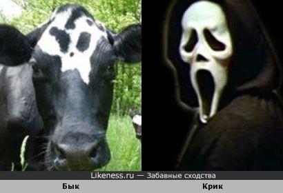 Бык в маске призрака