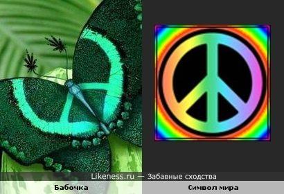 На крыльях бабочки можно увидеть символ мира