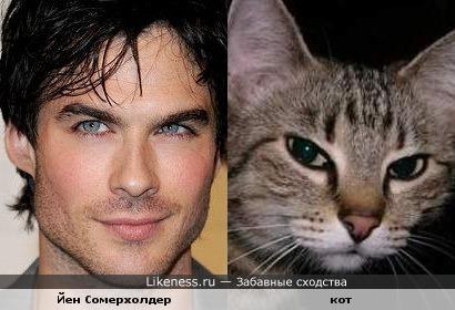 http://img.likeness.ru/uploads/users/6290/1307656375.jpg