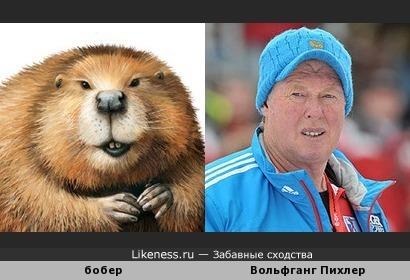Тренер биатлонисток России Вольфганг Пихлер похож на бобра