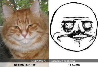 Me Gusta. КотЭ style :)