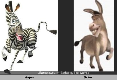 Марти и Осёл так похожи