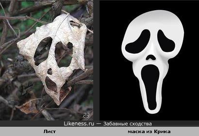 Лист похож на маску из крика