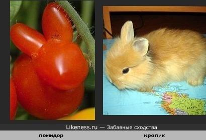 И еще о овощах мутантах.