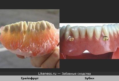 Долька грейпфрута похожа на зубки.