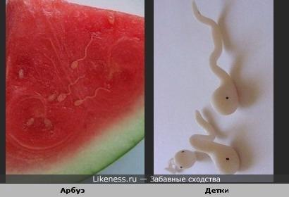 Проросшие семечки арбуза похожи на головастиков
