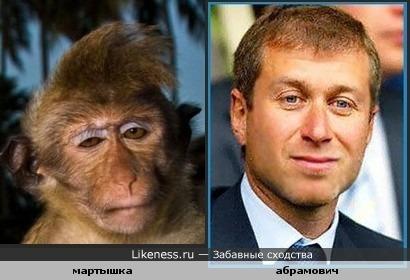 Вот смотрю на эту обезьянку,а вижу Абрамовича