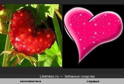 Ягода по форме как сердечко