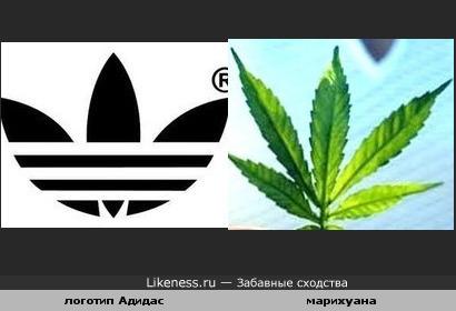 Логотип Адидас напоминает мне этот листочек