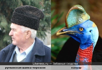 Похожие шапочки