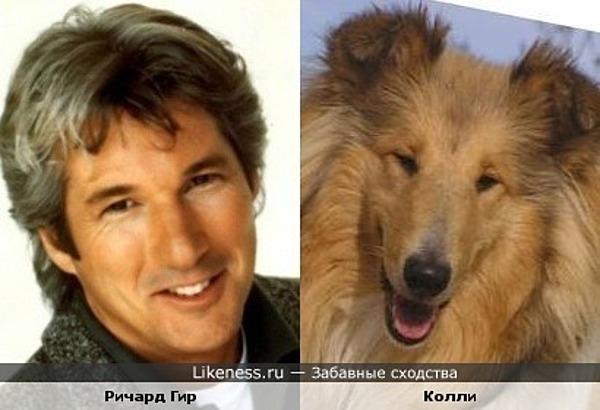 http://img.likeness.ru/uploads/users/6513/1311175571_big.jpg