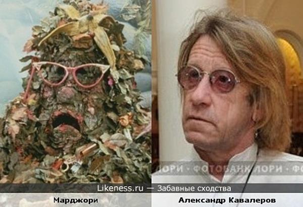 Куча мусора похожа на Алесандра Кавалерова
