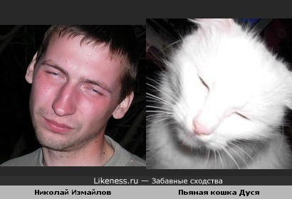 Кошка Дуся передразнивает Николая