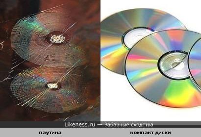 Паутина похожа на компакт диски
