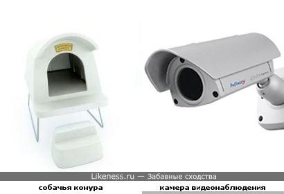 Собачья конура похожа на камеру