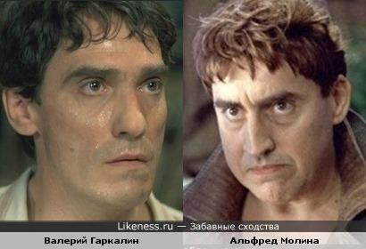 Валерий Гаркалин похож на Альфреда Молину