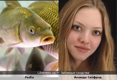 Да простят меня поклонники, но глазами Аманда напоминает рыбу