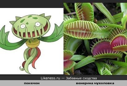 Покемон похож на растение