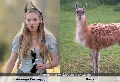 Аманда Сейферд похожа на Ламу