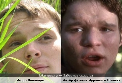 Актёр Фильма Муравьи в штанах похож на Игоря Ненайчука