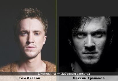 Том Фелтон похож на Максим Транькова