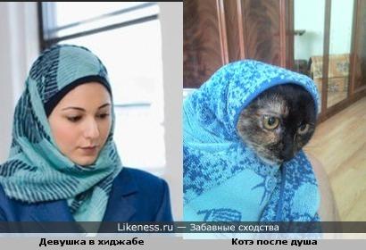 Мусульманка похожа на мою котэ!