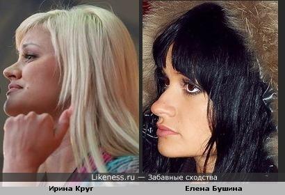 Между Ириной Круг и Еленой Бушиной есть определенное сходство