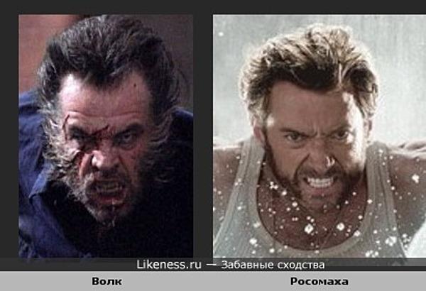 Волк Николсона и Росомаха Джекмана похожи