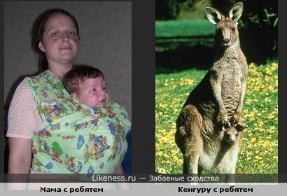 Мамы млекопитающих похожи:)