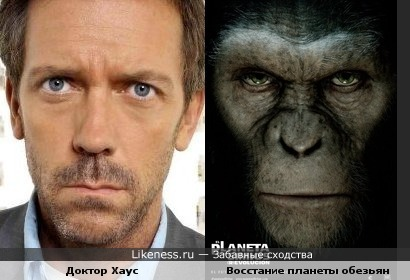 Лью Лори похож на обезьяну