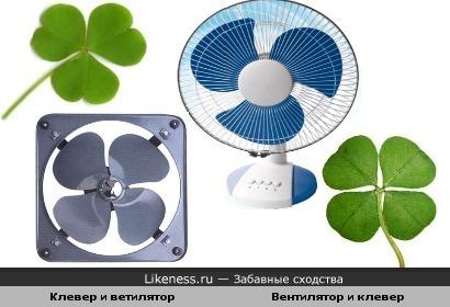 Вентилятор и клевер похожи