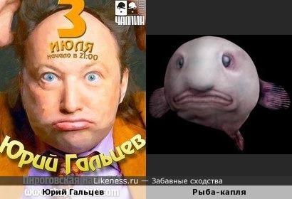 Юрий Гальцев на афише напомнил рыбу-каплю