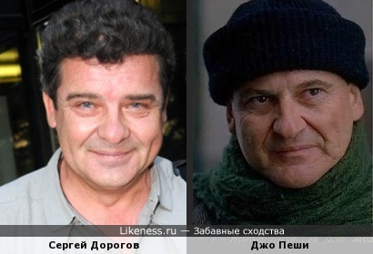 Сергей Дорогов похож на Джо Пеши