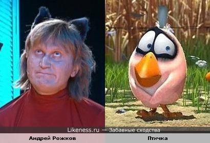 Андрей Рожков похож на птичку на проводе