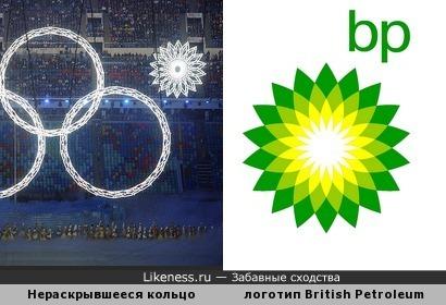 Во всем виновата British Petroleum