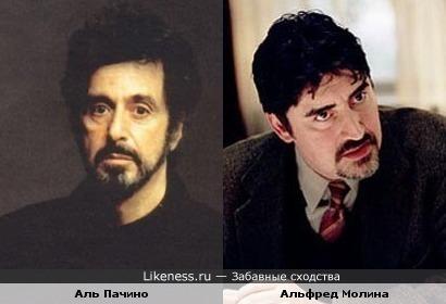 Аль Пачино и Альфред Молина похожи