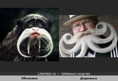 Они, видимо, были на одном конкурсе бородачей!