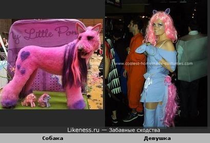 Собачка и девушка косят под little pony.