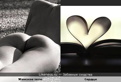 Часть женского тела похоже на сердце!